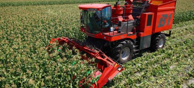 Самодельный комбайн для уборки кукурузы
