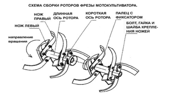 Схема сборки фрез для мотокультиватора