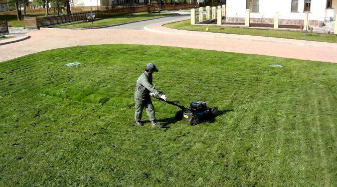 Особенности эксплуатации газонокосилок с функцией мульчирования